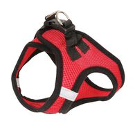 Large Red Harness