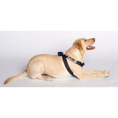 Pink Canine Travel Safe Harness, Large