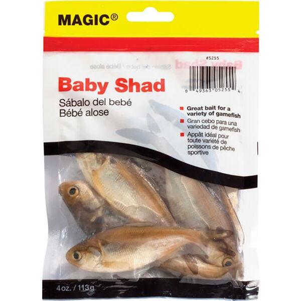Magic Baits Preserved Shad Bait