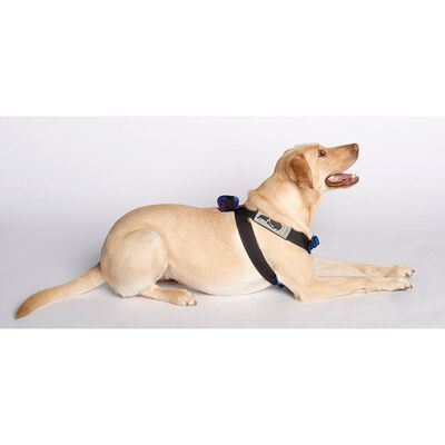 Pink Canine Travel Safe Harness, X-Small