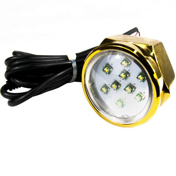 Race Sport CREE LED Underwater Drain Plug Light, Blue