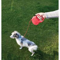 Retractable Pet Leash, Red