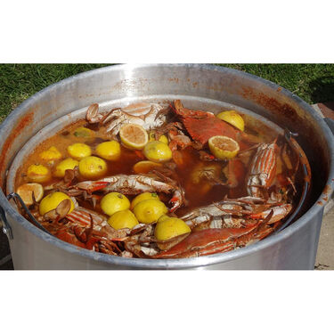 King Kooker Liquid Crab Boil