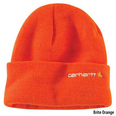 Carhartt Men's Wetzel Watch Hat