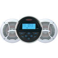 AM/FM/USB/Bluetooth 160 Watt Stereo System