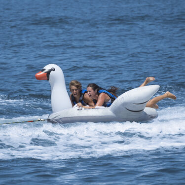 Solstice Swan 2-Person Towable Tube