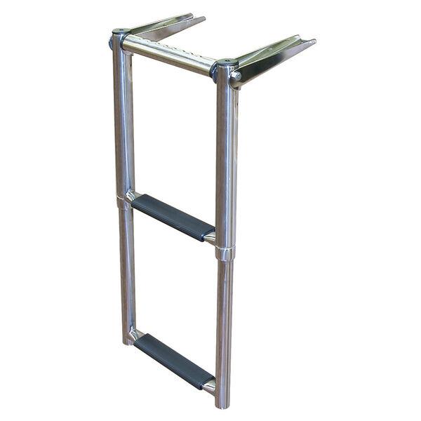 Dockmate Over-Platform Telescoping Ladder With Hand Grip, 2-Step