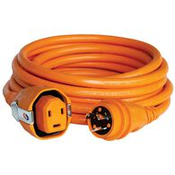 30 Amp 25' Dual Configuration Cordset with Twist-Type Connector