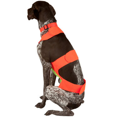 Scott Pet Field Vest, Medium