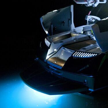 "Roswell 4"" Nightwater Pro Underwater Light"