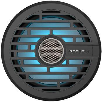 "Roswell R1 6.5"" In-Boat Speaker"