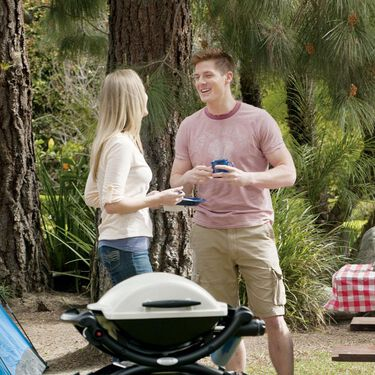 Weber Q 1000 Portable Gas Grill