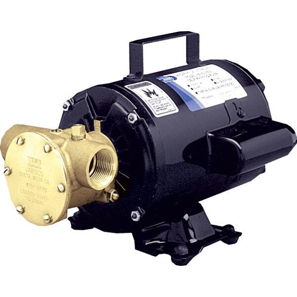 Jabsco Utility Pump With Open-Drip Proof Motor