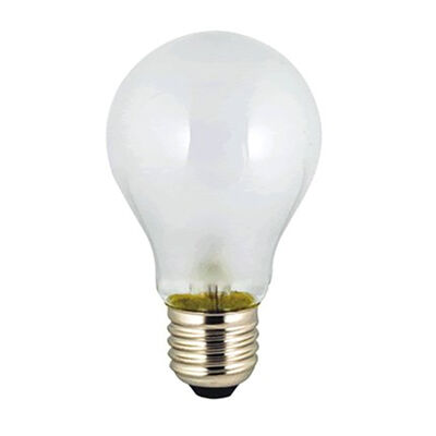 Ancor 24V Light Bulb With Standard Base, 50 Watts