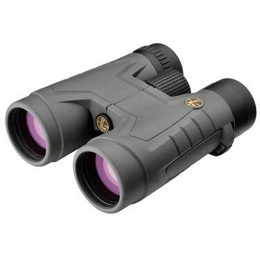 Leupold BX-2 Acadia Binoculars, 10x42, Shadow Gray