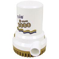 Rule Gold Series Bilge Pump