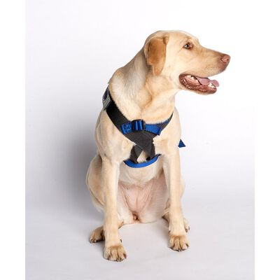 Blue Canine Travel Safe Harness, X-Small