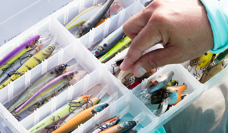 Fill Your Tackle Box With The Right Bait For Success