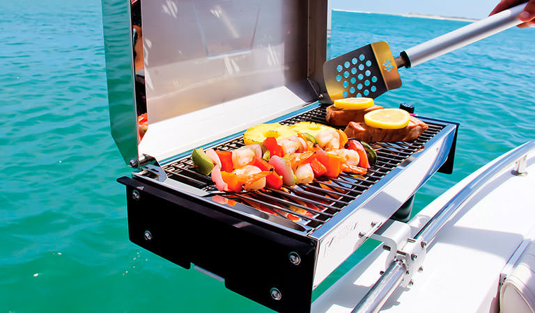 Enjoy a Barbecue on the Water